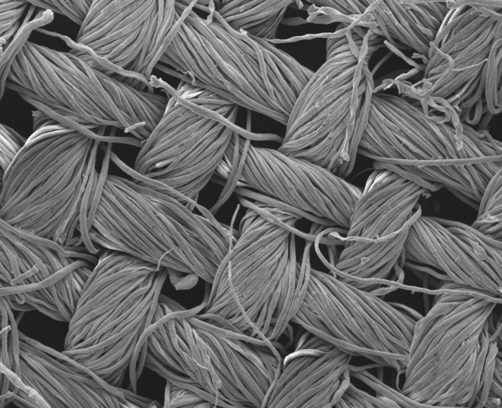 nano structured self-cleaning clothing